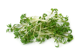 Feature Ingredient of the Month - Watercress