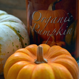 Beyond Pumpkin Pie: Healthy Pumpkin Recipe Round-Up
